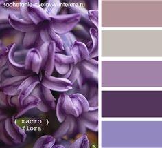 с чем сочетается фиолетовый-белый цвет: 17 тыс изображений найдено в Яндекс.Картинках