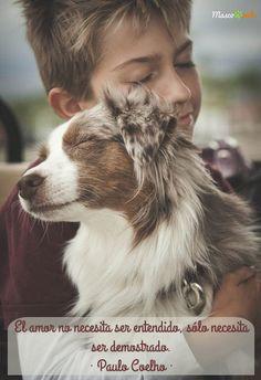 #perros #amor #petlovers #doglovers #perro #mascotas #frases