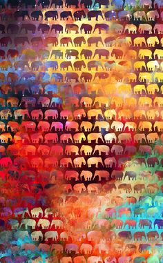 Elephant Wallpapers HD Pictures One HD Wallpaper Pictures Apple Wallpaper, Wallpaper Backgrounds, Iphone Wallpaper, Wallpaper Pictures, Elephant Love, Elephant Art, Elephant Quotes, Elephant Stuff, Colorful Elephant