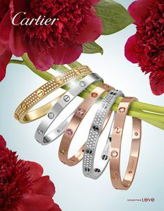 cartier my brother-in-laws fabulous designs!