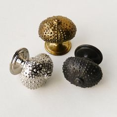 Sea Urchin Door Knob and Cupboard Knob Product DF 58