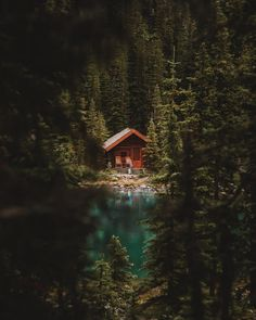 Travel in Tiny House Voyage en Tiny House sur Airbnb lien sur le profil on Airbnb - Link on the Profil Cabin In The Woods, Cottage In The Woods, Cabin On The Lake, Forest Cabin, Forest House, Forest Cottage, Lake Cabins, Cabins And Cottages, Cabin Homes