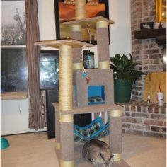 My cats can't get enough of this homemade cat tree. Comes equipped with a bed and hammock. Tip: Visit your local home improvement store and ask them for their carpet scraps and tubes. Doing this saved me $200 for a at tree in the store. And I have plenty left for a second tree!