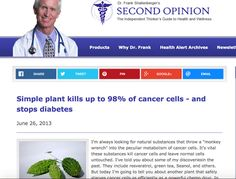 Pesquisa comprova: esta planta mata o câncer, controla diabetes e eleva imunidade! | Cura pela Natureza