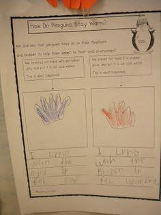 Mrs. Wills Kindergarten: Search results for penguins