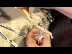 How to Braid a Horse's Mane - brought to you by Greenhawk www.greenhawk.com