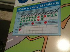 Clifton Beach: Water quality