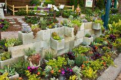 succulent garden - Google 検索