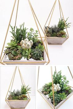Gold geometric planter with concrete base. I would use the flower in my house and outdoor in my garden too. So pretty. #ad #concrete #flowerpot #planter #hangingplanter #pot #homedecor #goldenmetal #geometricplanter