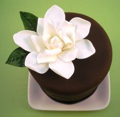 beautiful mature birthday or celebration cake