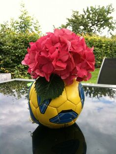 Discarded soccer ball becomes a flower vase.