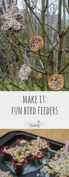 How to make your own homemade bird feeders - a simple and fun nature activity for children which will encourage wild birds to visit your garden! kids How to make fun shaped bird feeders - Growing Family