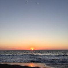 Los atardeceres siempre me han generado algo, sobre todo en está playa... ☀️ #puestadesol #sunset #sol #sun #playa #beach #gaviotas #verano #summer #piedradelosenamorados #constitución #sinfiltro