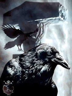 Ravens with Thor's hammer by thecasperart on DeviantArt Arte Viking, Viking Raven, Viking Ship, Viking Art, Viking Warrior, Norse Pagan, Norse Mythology, Corvo Tattoo, Viking Wallpaper