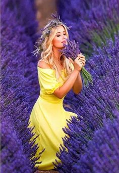 Stonewell Farm are producers of small batch lavender products handmade on site using lavender grown on our farm near Toronto. Join us for Lavender related workshops. Lavender Cottage, Lavender Garden, Lavender Blue, Lavender Fields, Lavender Flowers, Purple Flowers, Roses Garden, Rose Flowers, Lilac