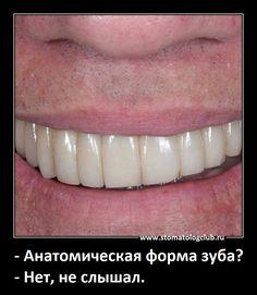 Анатомическая форма зуба #стоматология #dentistry Dental Assistant Study, Dental Hygiene, Dental Life, Dental Art, Popular Instagram Accounts, Dental Anatomy, Dental Services, Tooth Fairy, Dentistry