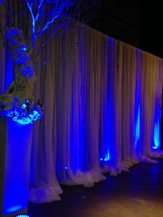 Wedding draping & uplighting. KC Events & Florals, Houston, TX @ House of Blues Houston,TX
