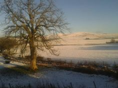 winter 2013, taken while in the bus to Dumfries Scotland