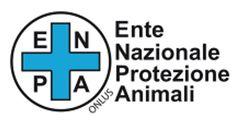 AMICI CUCCIOLOTTI 10 anni in difesa degli animali