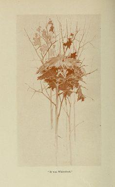 Wild Life Near Home, Dallas Lore Sharp, 1901.