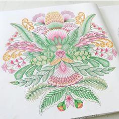 By @mnordstrom85 #arttherapy #mandala #milliemarottafans #coloringbook #coloringforadults #instacolor #art #drawing #painting #coloring #milliemarotta #tropicalwonderland #animalkingdom #wildsavannah