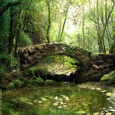 Old stone bridge over a stream in wooded setting via: Life is in everything beautiful Peaceful scene. Old stone bridge over a stream in wooded setting via: Life is in everything beautiful Foto Nature, All Nature, Amazing Nature, Science Nature, Beautiful World, Beautiful Places, Belle Photo, Faeries, Beautiful Landscapes