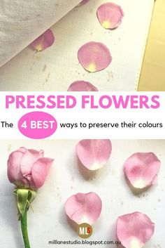 The best methods for preserving flowers and petals from your special bouquets forever. These 4 flower drying techniques will help retain the colour of your flowers and they're fast too. Pressed Roses, Dried And Pressed Flowers, Pressed Flower Art, Fresh Rose Petals, Flower Petals, How To Preserve Flowers, Preserving Flowers, How To Dry Flowers, Diy Resin Flowers