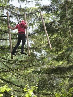 At Tree to Tree the day starts with a zip line adventure, continues with a gourmet lunch and ends with fine wine & a deluxe suite. #travel #adventure #zipline