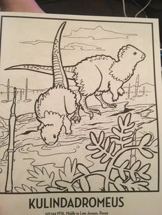 """a-dinosaur-a-day: """" THE COLORING BOOK OF (SCIENTIFICALLY ACCURATE) DINOSAURS IT IS SO GOOD HERE ARE SOME OF MY COLORINGS SO FAR EORAPTOR MELANOROSAURUS COELOPHYSIS THERE'S FLUFF FAR AND WIDE A..."""