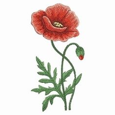 Watercolor Poppies 6 - 3 Sizes! | What's New | Machine Embroidery Designs | SWAKembroidery.com Ace Points Embroidery