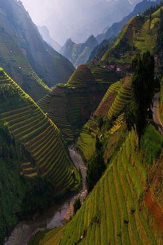 Terraced river valley in Bhutan.