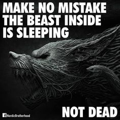 Certainly how I feel right now Wolf Quotes, True Quotes, Best Quotes, Motivational Quotes, Usmc Quotes, Quotes Quotes, Random Quotes, Strong Quotes, Funny Quotes