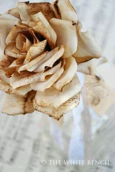 Used Coffee Filter Roses - impressive!
