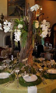 Kappa Tablescapes 2012 Dallas - Hey Waiter.. there's a tree in my soup... What a COOL idea... picnic indoors. tree for centerpiece and grass for placemats.