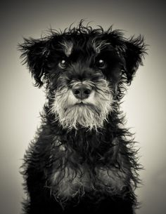 <3 I love black and white photos and this is just tooooo cute!!