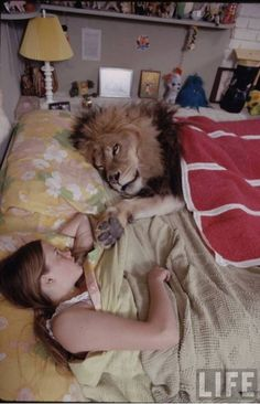 Future actress Melanie Griffith with Neil the lion in 1971. Griffith's mother, Tippi Hedren, was an animal advocate and allowed the lion to live with the family. She now does not recommend it. #Lions #ExoticPets