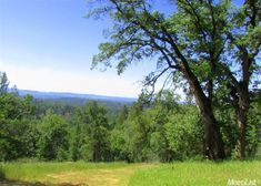 5000 Campini Way, Placerville, CA 95667 — Absolutely beautiful land w/several options for bldg locations to take advantage of long-range views&sun exposure. Many oaks & pines on this 40 acre parcel in addition to open grassy areas.Well on property, perc tested &septic design w/ elect. to site.Barn w/horse modification possibilities. Enjoy sights &sounds of nature.Located in the heart of county's  vineyard/winery area.Lots of possibilities for this land that's close to…