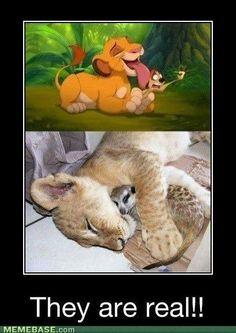 my childhood still exists :D
