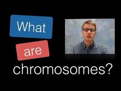 ▶ What are Chromosomes? - YouTube  (Might be too high level for middle school but can use it as an idea of how to explain it to kids or to make own video)