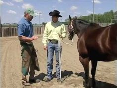 How to treat an Abscessed Hoof (PART 1) (Clinton Anderson)