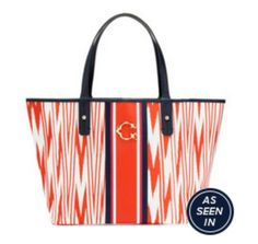 Printed Stripe Signature Tote from C. Wonder.  Check out the great savings on www.DollarSenseDiva.com.