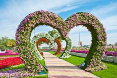 Tunnel Of Hearts