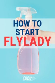 How to Get Started With FlyLady Get a good cleaning routine established in your home! How to start cleaning and decluttering your home using the Flylady system. Tips and tricks for making the most of this effective home management program. Deep Cleaning Tips, House Cleaning Tips, Cleaning Solutions, Spring Cleaning, Cleaning Hacks, Zone Cleaning, Cleaning Routines, Daily Routines, Cleaning Checklist