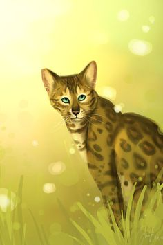 "Leopardstar * * "" I yam serious ! What are 'warrior cats' and where do dey come from ? """