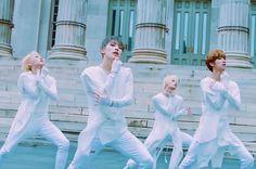 Seventeens Performance Team Dominates Brooklyn In 13th Months Dance (lilili Yabbay) Music Video: Watch #seventeen