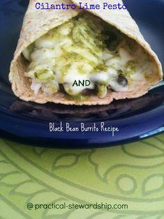Black bean burrito with cilantro Lime Pesto