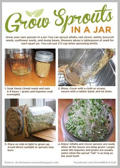 Grow Sprouts in a Jar www.GrowREALFood.com #Sprouts #Gardening #Vegetables #Health
