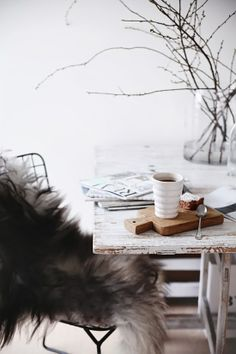 """Nordic Interior - branches and """"fur"""""""