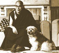 Le 14ième Dalaï Lama et son chien ...