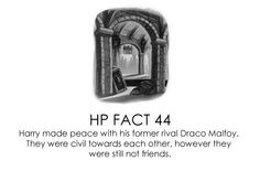 HP facts - Harry and Draco.